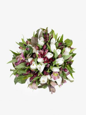 Floral Fantasy WUD Flowers
