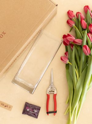 Your personally selected Therapy Box - Passion in Bloom
